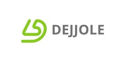 Letter DL Flat line Logo