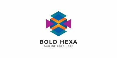 Bold Hexagon Colorful Logo