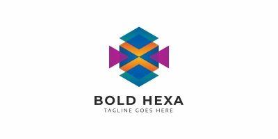 Bold Hexagon Colorful Logo