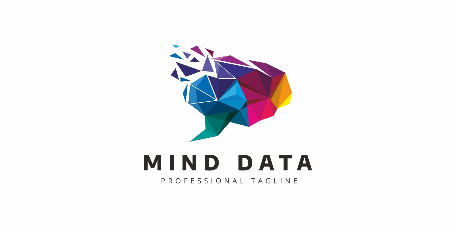 Brain Data Colorful Logo