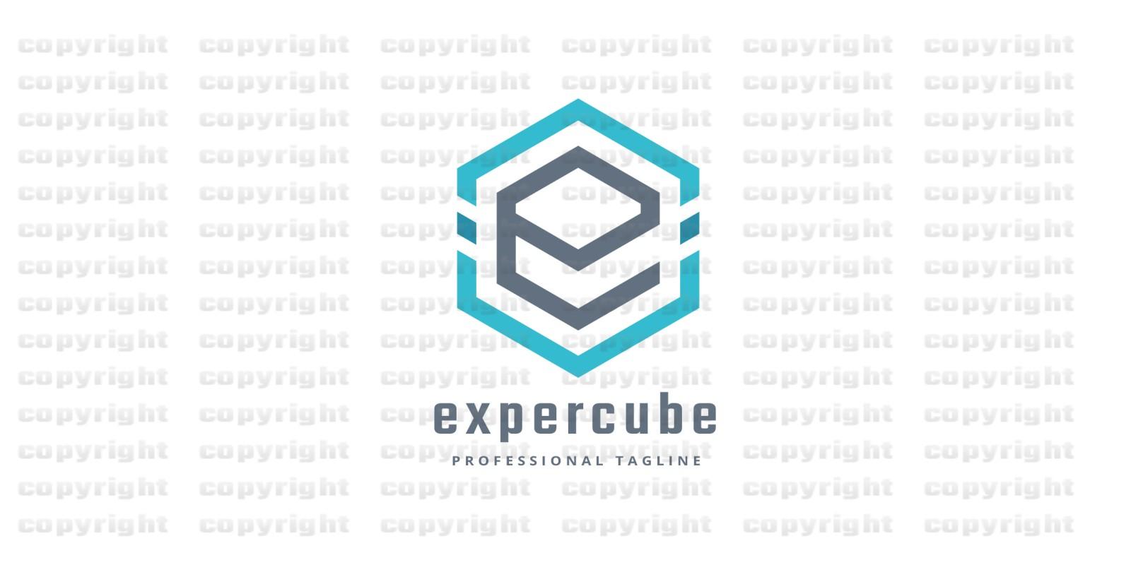 Expert Cube Logo