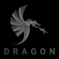 Dragon Modern Logo