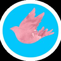 Twitter Clone With Firebase - Flutter Application