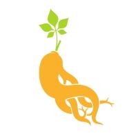 Ginseng Logo Template