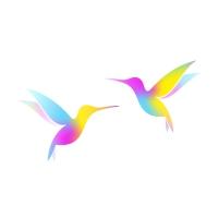Colorful Hummingbirds Logo Template