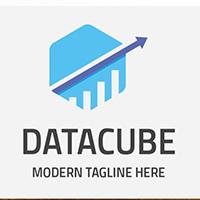 Business Data Cube Professional Logo