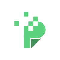 Letter P Logo Document Design Template