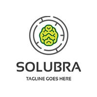 Brain Solution Logo