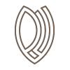 Letter P+Y Logo Design