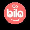 cobilo-multi-store-delivery-system