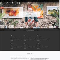 Artist - Person Page Responsive Template
