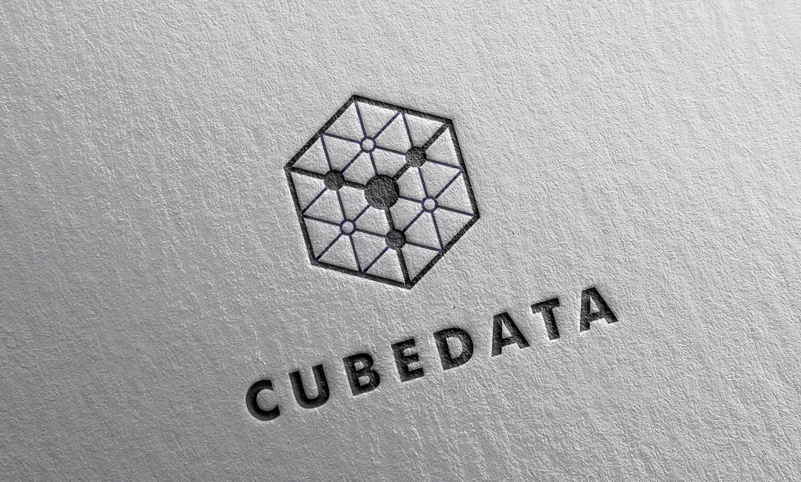 Cube Data Logo Template Screenshot 1