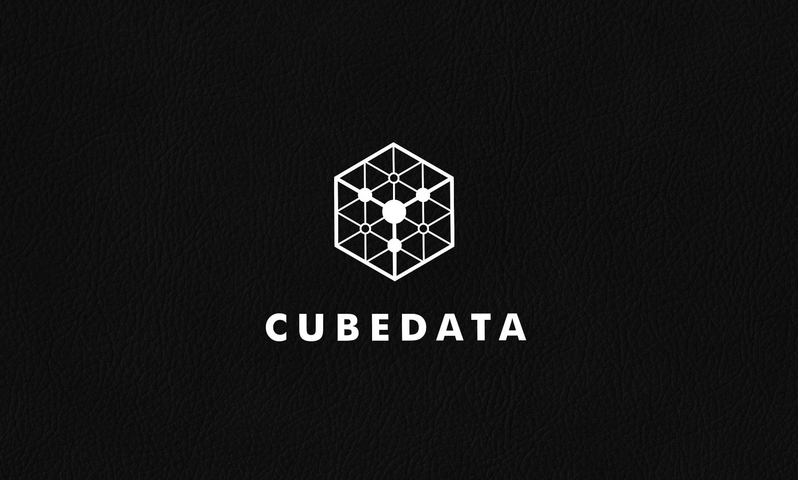 Cube Data Logo Template Screenshot 2