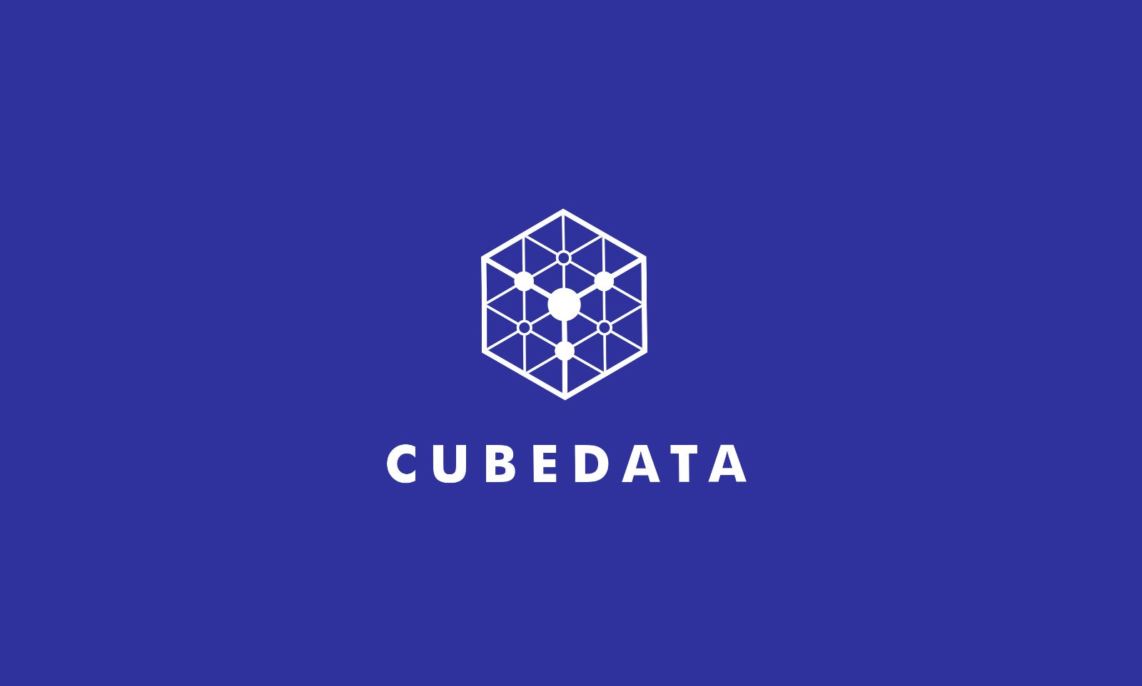 Cube Data Logo Template Screenshot 3