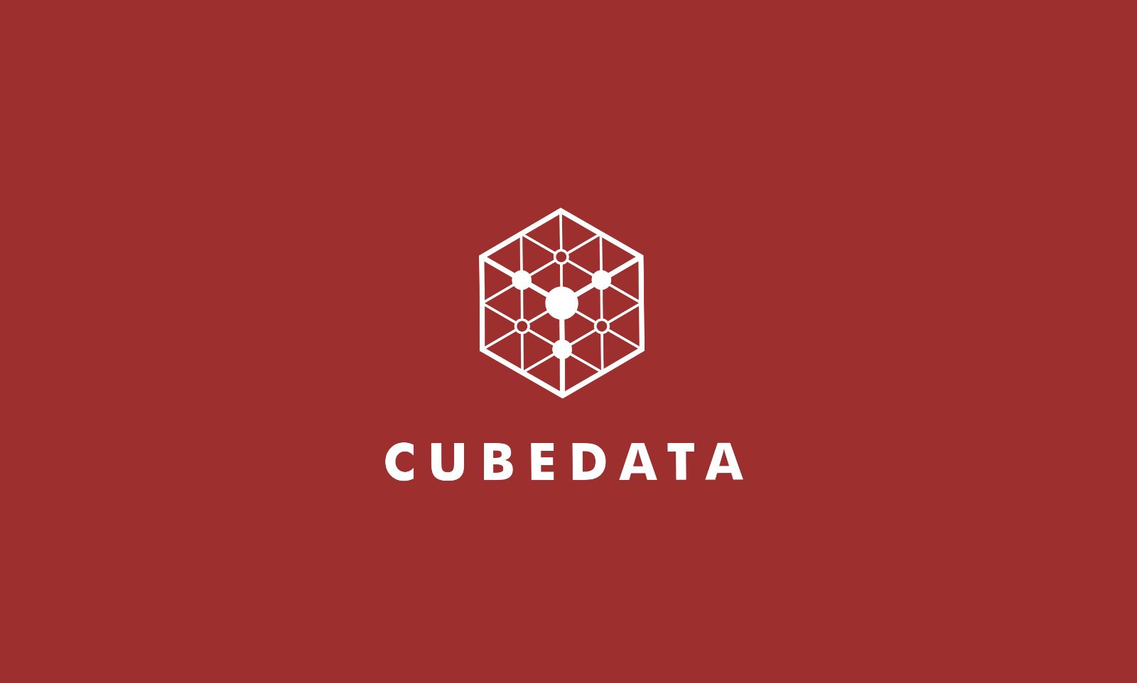 Cube Data Logo Template Screenshot 4