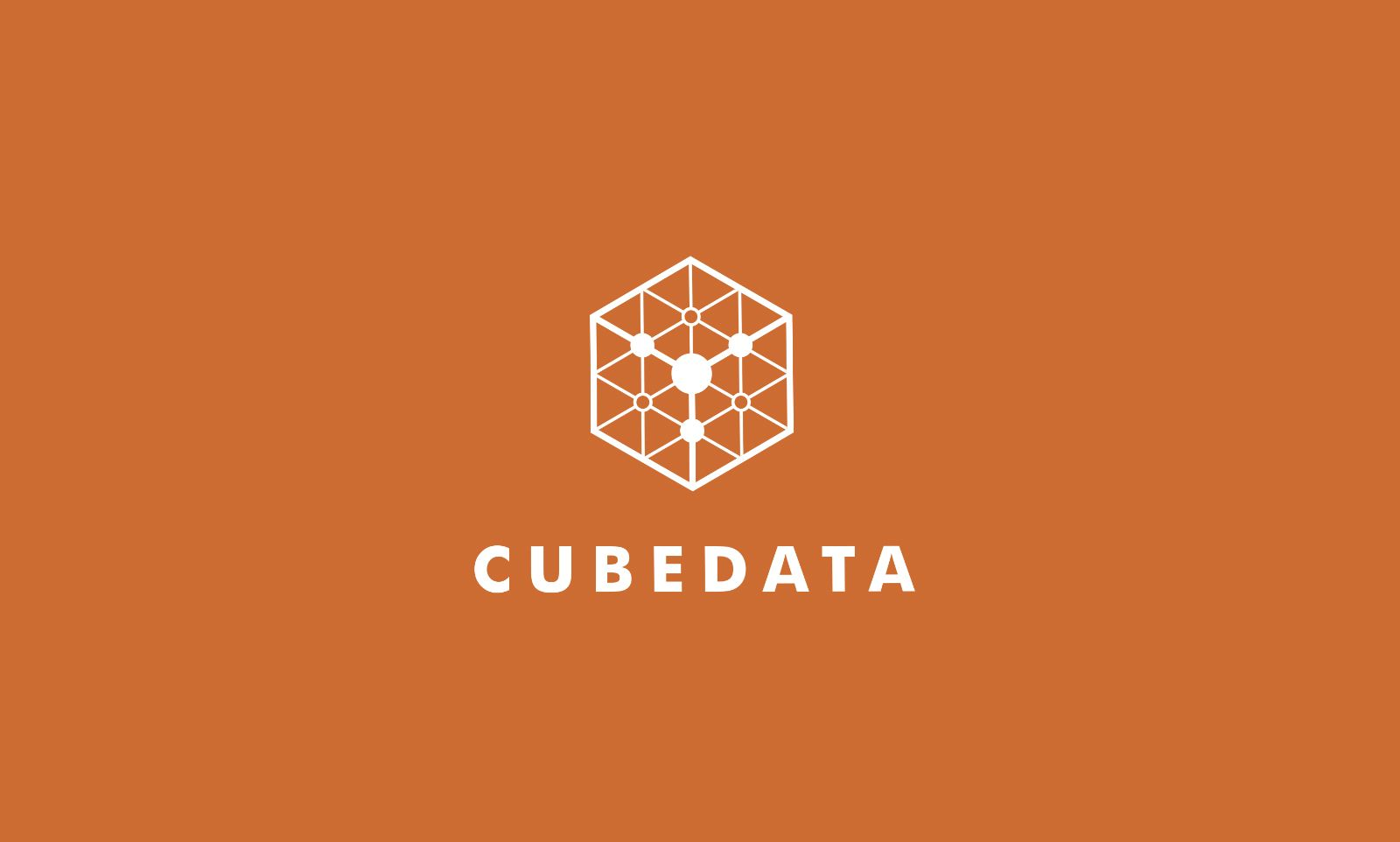 Cube Data Logo Template Screenshot 5