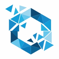 Hexagon Polygon Logo