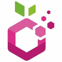 Digital Fruit Logo