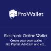 prowallet-electronic-online-wallet-script