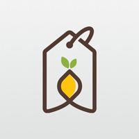 Lemon Tag Logo Template