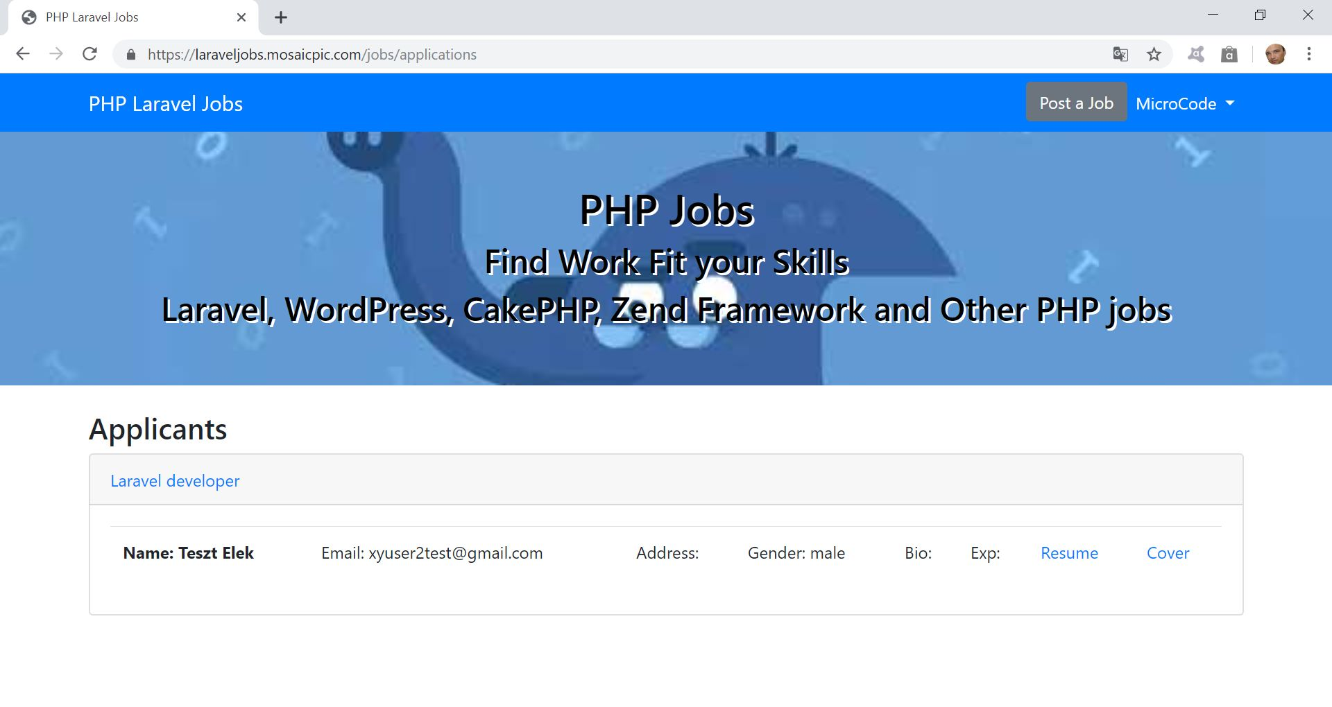 PHP Jobs Site  - Laravel And VueJs Screenshot 12