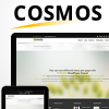 Cosmos - Wordpress Business Theme