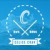 celice-wordpress-portfolio-theme