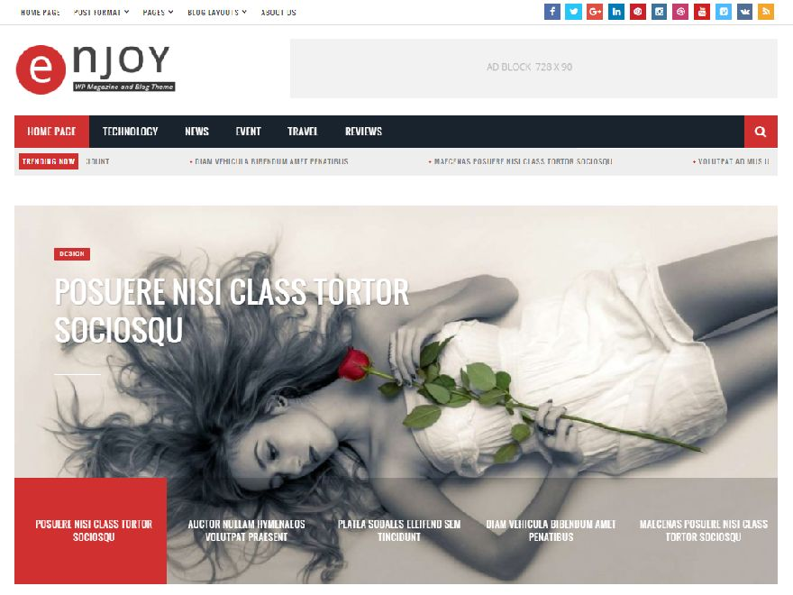 Enjoy - WordPress Magazine and Blog Theme Screenshot 10