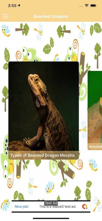 Reptiles And Amphibians - iOS Source Code Screenshot 6
