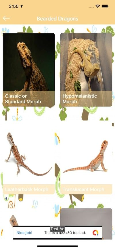 Reptiles And Amphibians - iOS Source Code Screenshot 7
