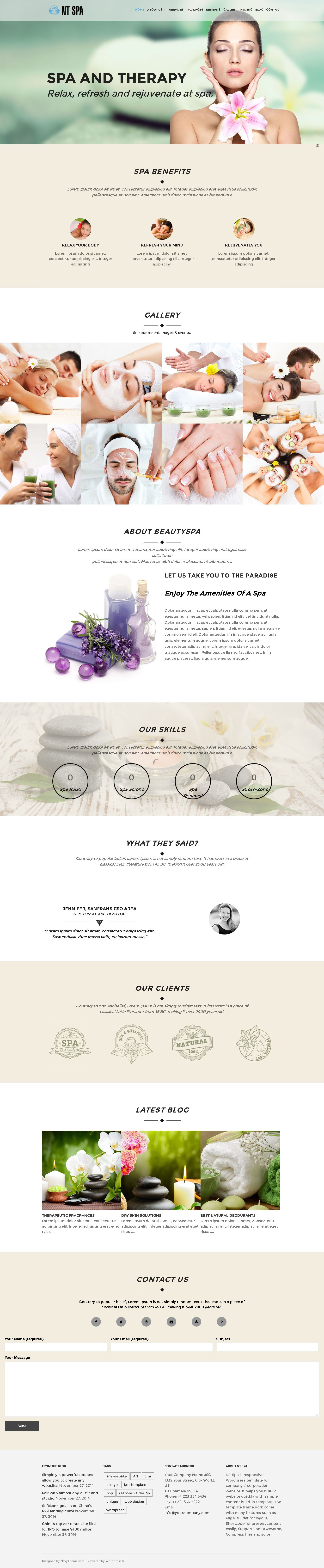 NT Spa – Spa Wordpress Theme Screenshot 1