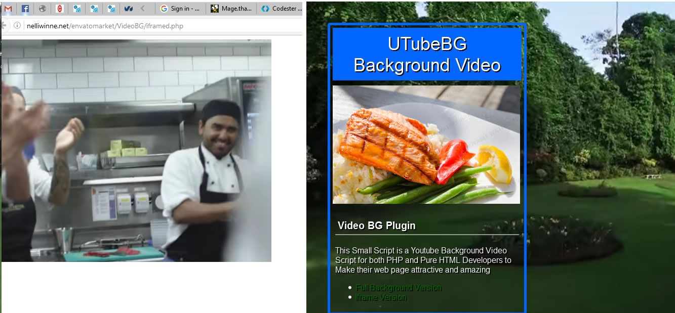 UTubeBG -  Youtube Background Video PHP Script Screenshot 3