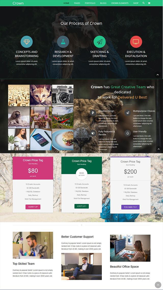 Crown - Multipurpose WordPress Theme Screenshot 2