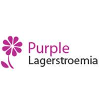 Ap Purple Lagerstroemia Prestashop Theme