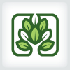 Tree Logo Template