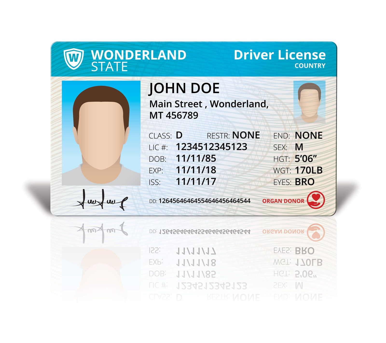 Driver License Mock Up Screenshot 1