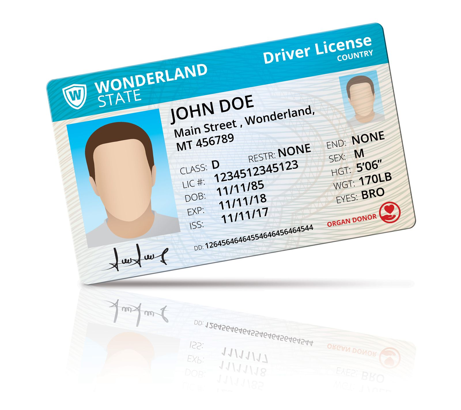 Driver License Mock Up Screenshot 2