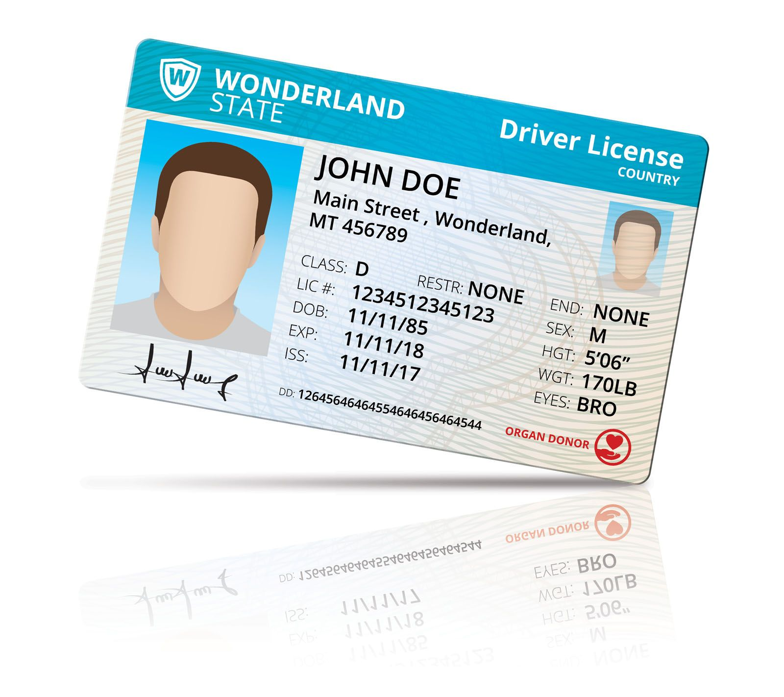 Driver License Mock Up Screenshot 3