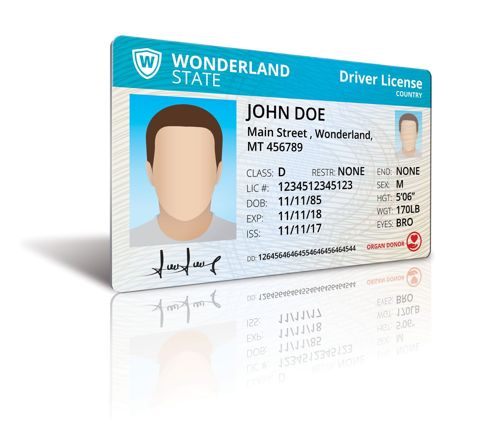 Driver License Mock Up Screenshot 6