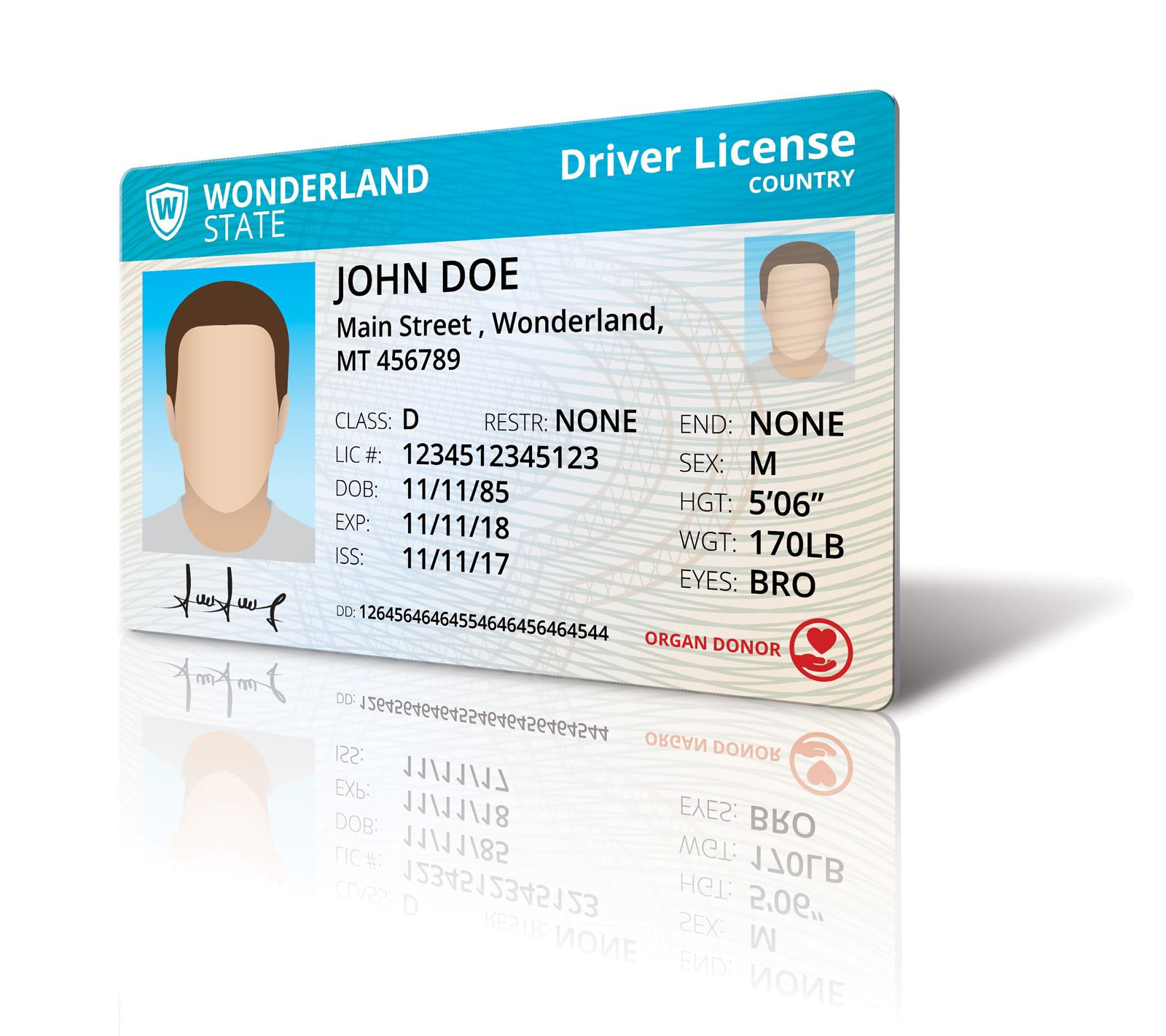 Driver License Mock Up Screenshot 7