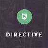 directive-one-page-responsive-wordpress-theme