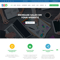 SEO - SEO And Digital Marketing Agency Template