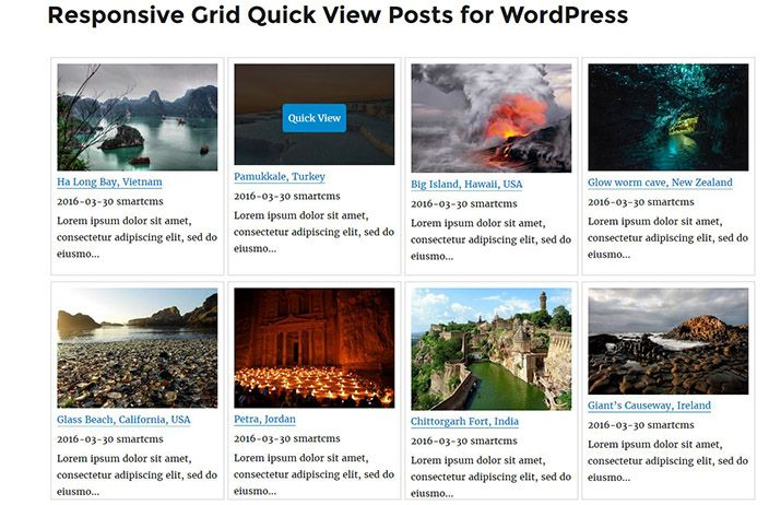 Responsive Grid Quick View Posts for WordPress Screenshot 7