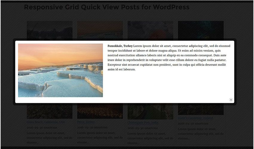 Responsive Grid Quick View Posts for WordPress Screenshot 8