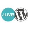 alive-multipurpose-responsive-wordpress-theme