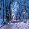 dreamforest-wordpress-theme-with-cms