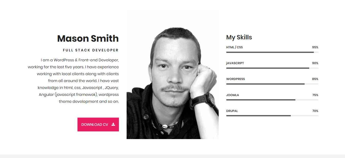 Mason Portfolio HTML Theme Screenshot 2