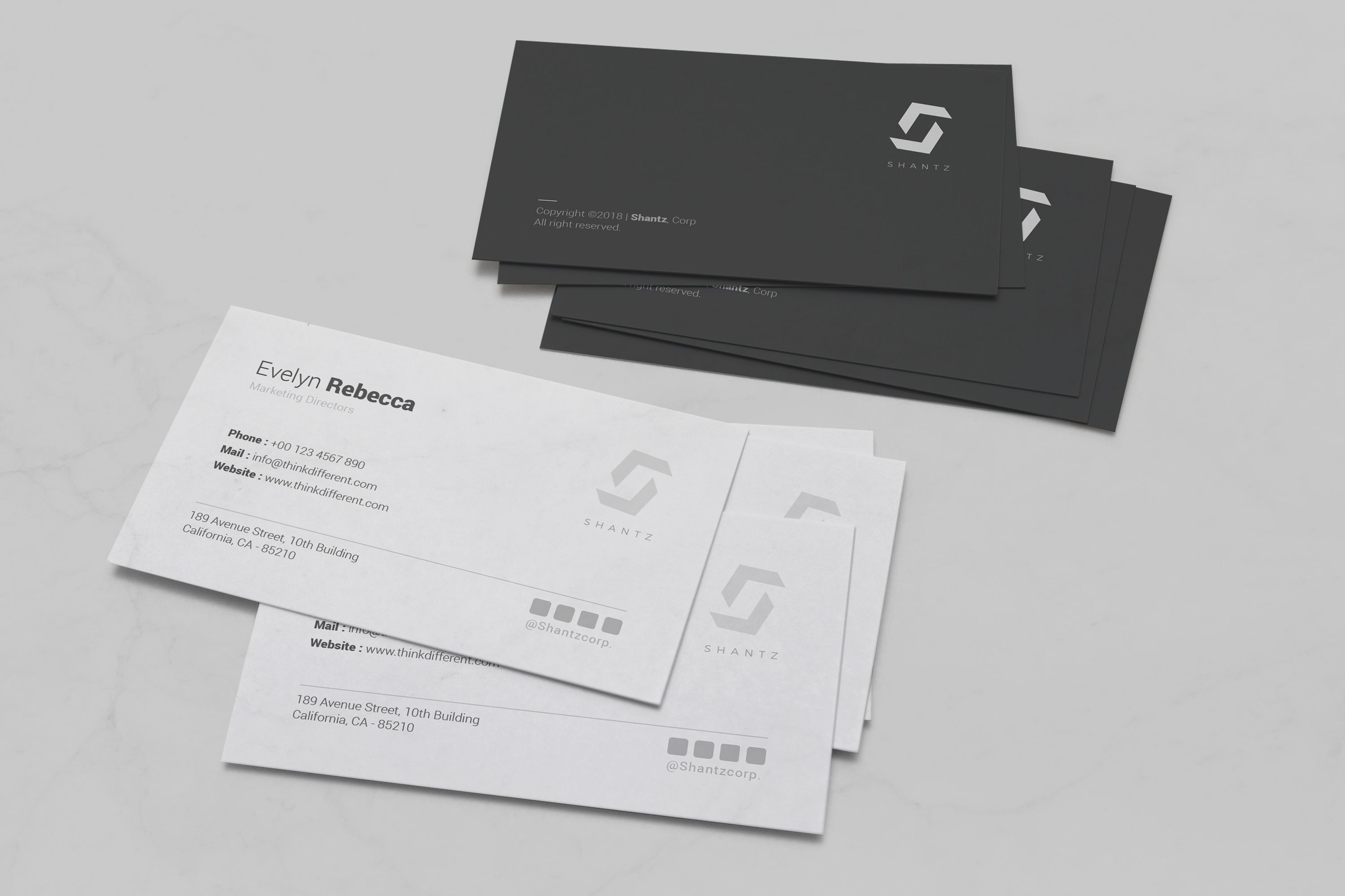 Professional Business Card Vol 04 Screenshot 4