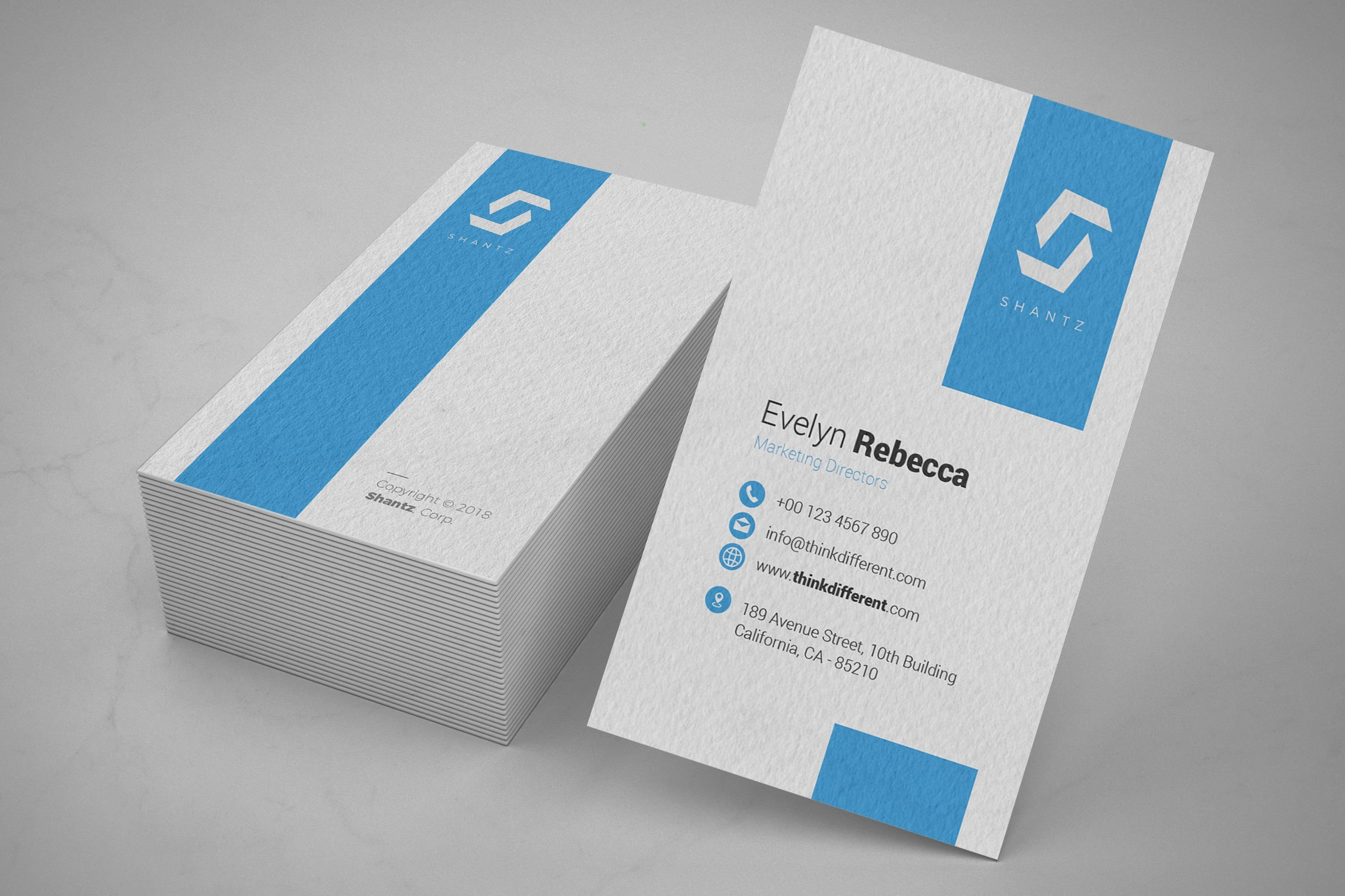 Professional Business Card Vol 04 Screenshot 5