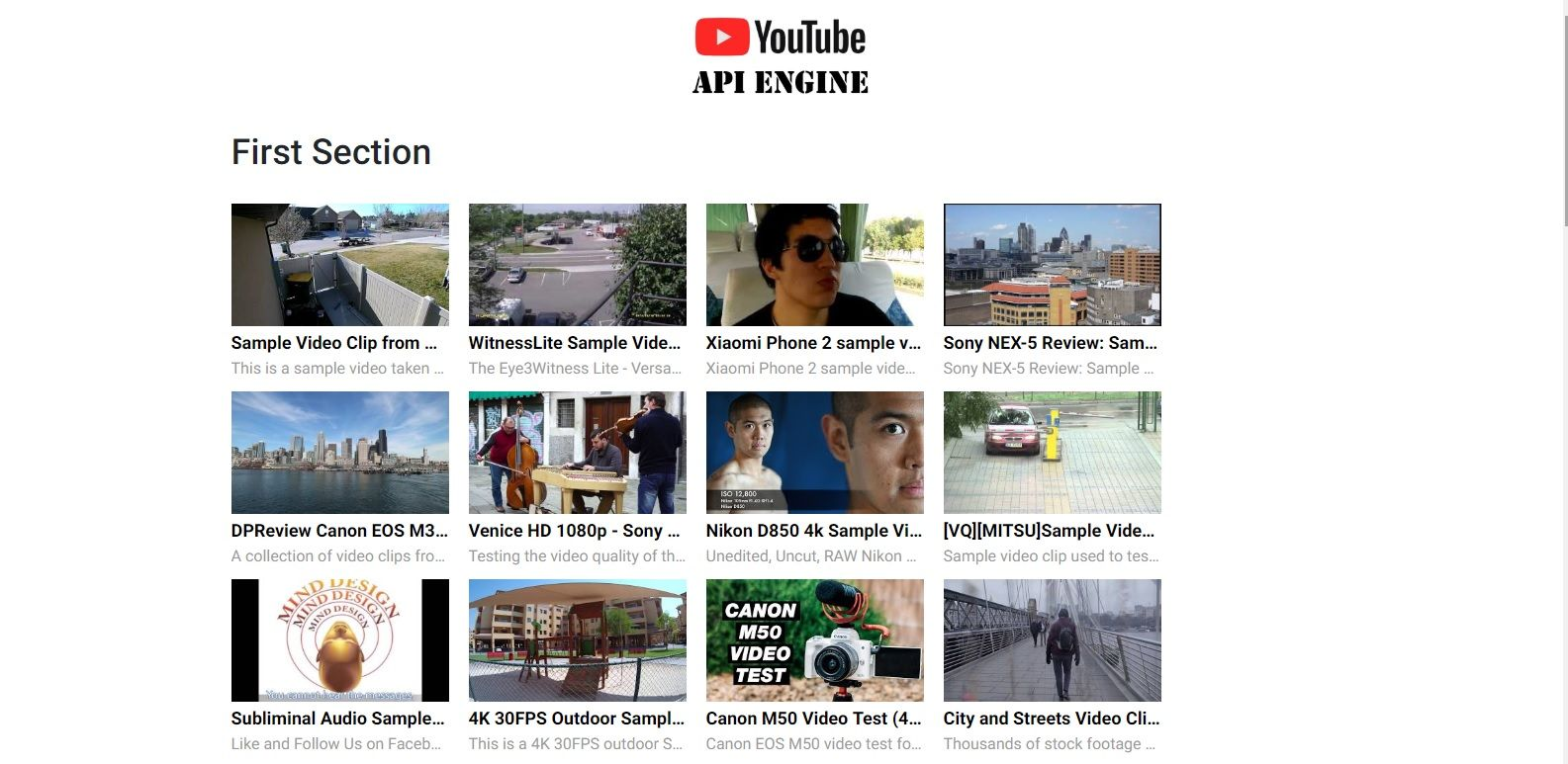 YouTube API Engine Screenshot 2